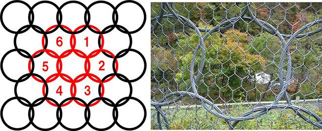 1リングに対し6リングが絡み合う配置形状
