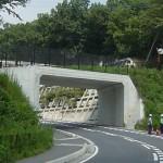 埼玉県寄居町(内幅11.4m×内高7.0m×延長10.0m)